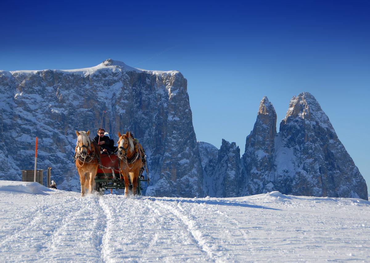 Winter-Seiser-Alm