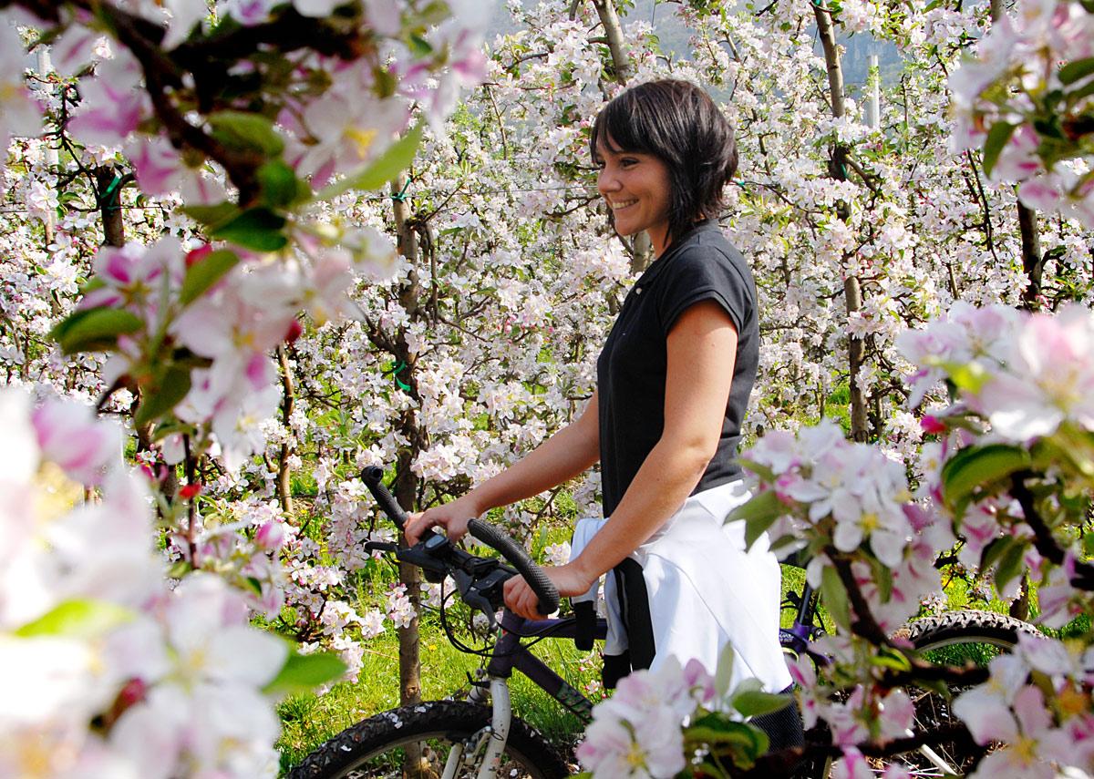 Frühling in Südtirol