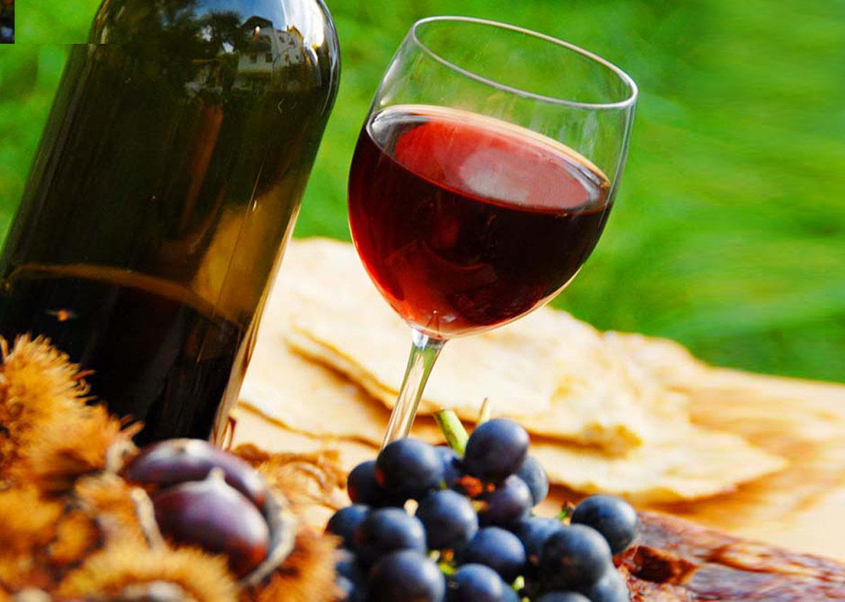 Weinkultur-Südtirol