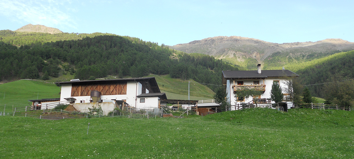 Hahnenhof