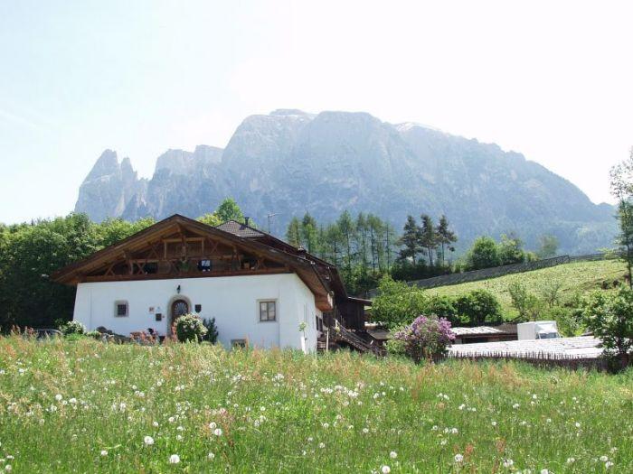 Salmsein Biohof